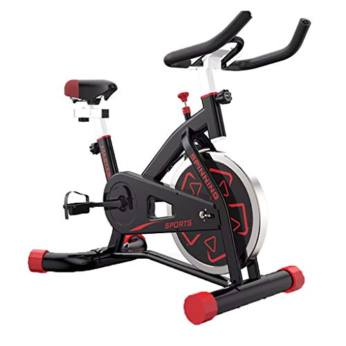 LY Indoor Cycling Exercise Bike Stationary Commercial Standard, Ipad Mount, Soft Cushion,Belt Drive Smooth and Quiet with Adjustable Seat & Handlebars & Base for Indoor/Garden/Workout Cardio